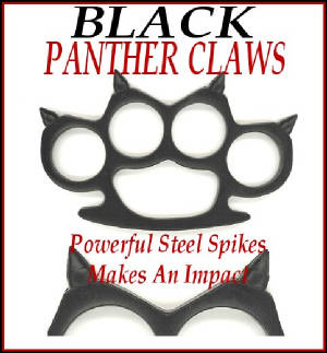 blackpantherclaws.jpg